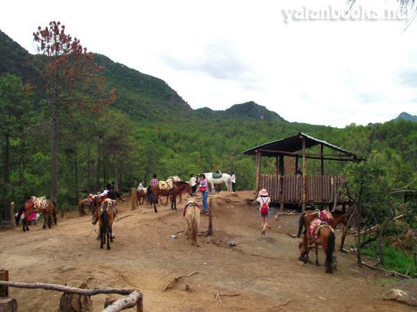 Lashi Lake Lijiang Photography Romanticism  茶马古道 拉市海 浪漫主义 风光摄影 Yalan雅岚 黑摄会
